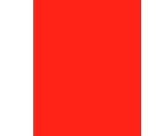 GRUPO MUNICIPAL PARTIDO SOCIALISTA OBRERO ESPAÑOL (P.S.O.E.)